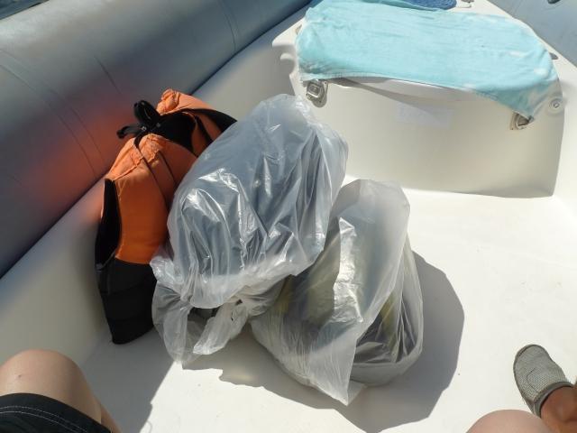 bags in plastic